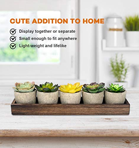 10 Pack Small Artificial Succulent Plants in Gray Pots Wood