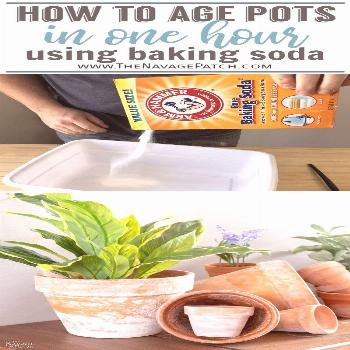 DIY Faux Aged Terra Cotta Pots | How to instantly age terra cotta pots using baking soda | Aging te