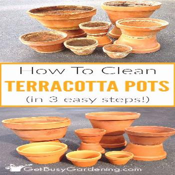 Do you have crusty old clay pots collecting dust in your garage? Get rid of that yucky white residu