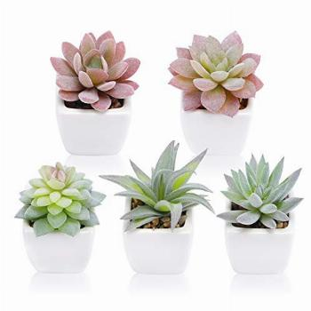 Funarty Artificial Succulent Plants in Pot Small Fake Plants
