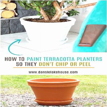 How to Paint Terracotta Planters so They Don't Chip or Peel. How to Paint Terracotta Pots DIY - Eas