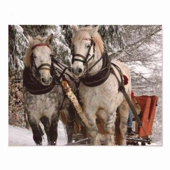 Ride Poster |  :  Sleigh Ride Poster |  :    Your pics printed & home delivered.  Stick 'em to the