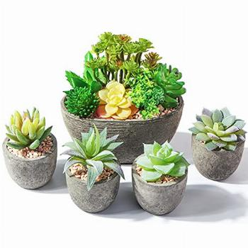 Succulents Plants Artificial in Pots, Small Fake Plants for