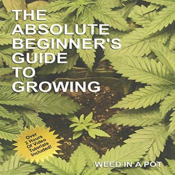 The Absolute Beginner's Guide To Growing Cannabis