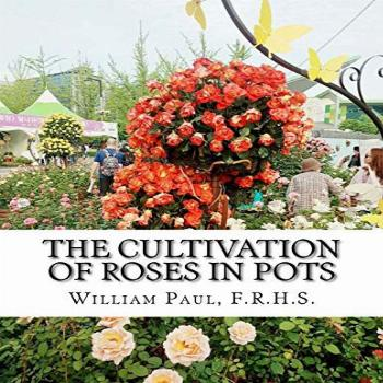 The Cultivation of Roses in Pots: Or; Growing Roses in