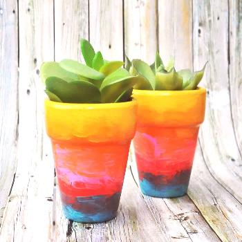 Use a variety of paint colors to turn flower pots into rainbow ombre awesomeness! Both children and