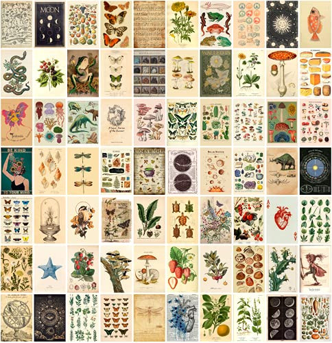 ANERZA Vintage Wall Collage Kit Aesthetic Pictures,