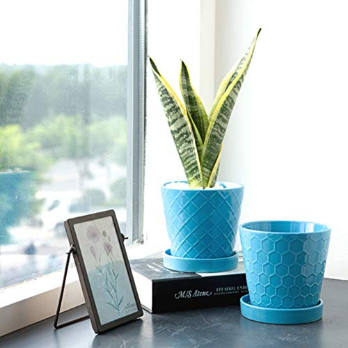 BUYMAX Plant Pots Indoor –5 inch Ceramic Flower Pot with