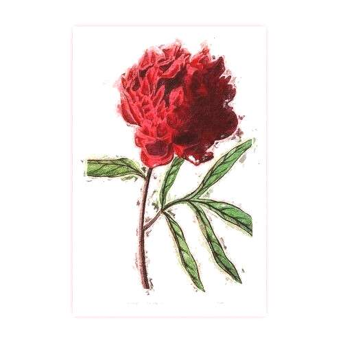 Cottage Poster Red Tree and Peony | - Poster Red Tree and Peony Brambly Cottage Size 42 cm H x 2