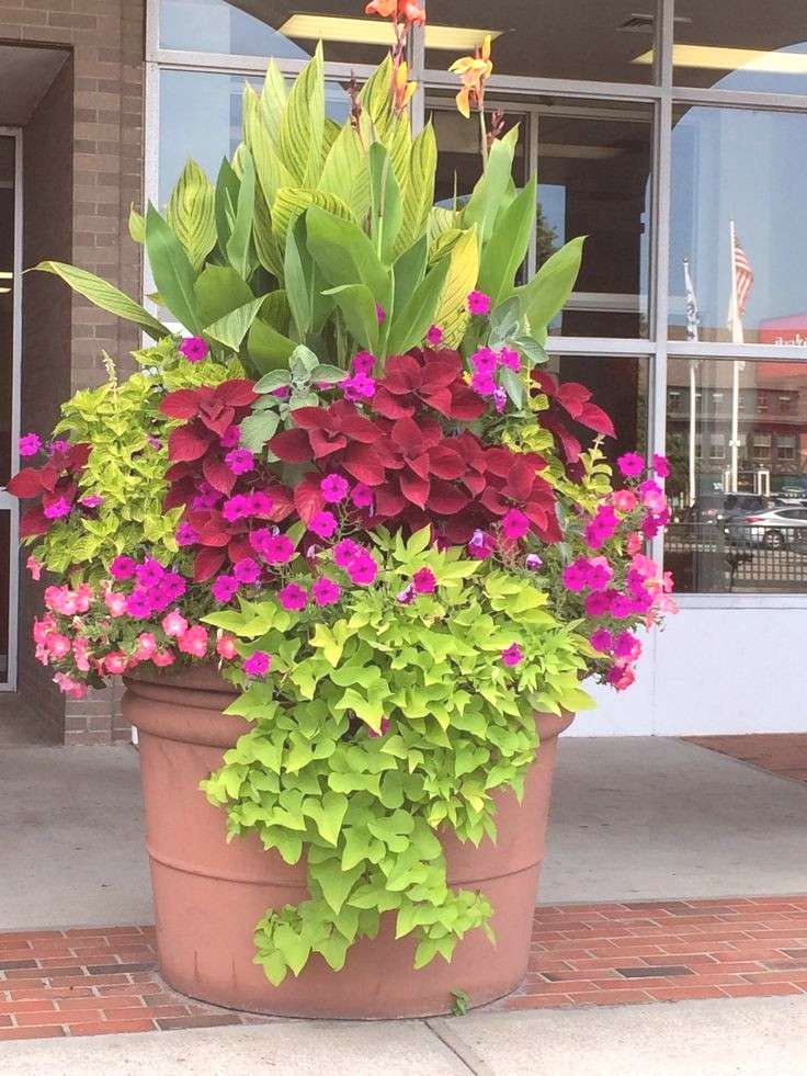 Here you will find a lot of pretty cool front door flower pot ideas. You can buy them from a local