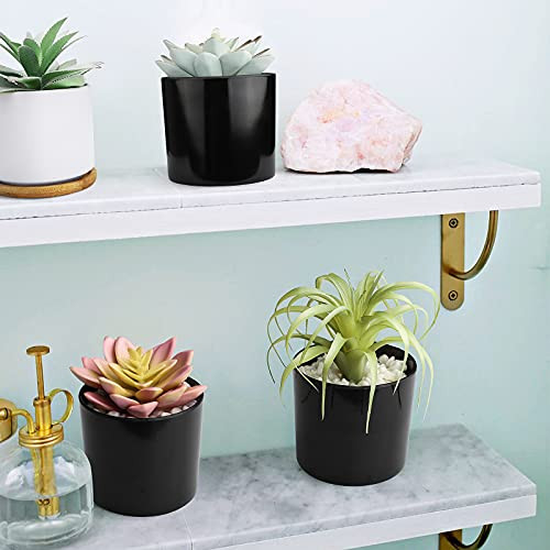 Hopewood Artificial Succulent Plants in pots Small Fake