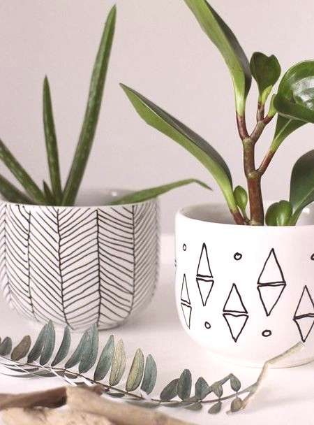 If you have glossy ceramic pots you can use a Sharpie ceramic pen to add an interesting design or y
