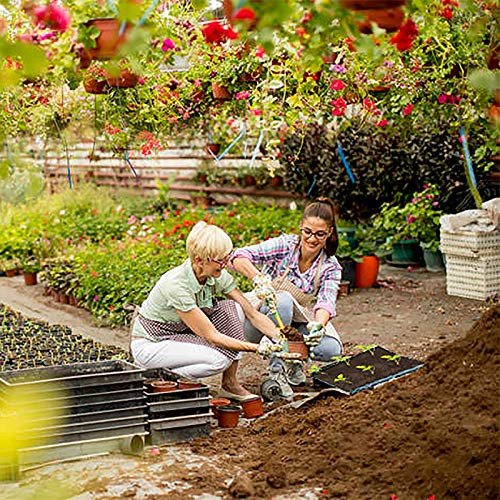 Raised Garden Planter Fabric Bed,6 Divided Grids Durable