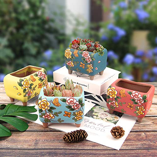 Succulent Pots Summer Impressions 5.5 Inch Hand Painted