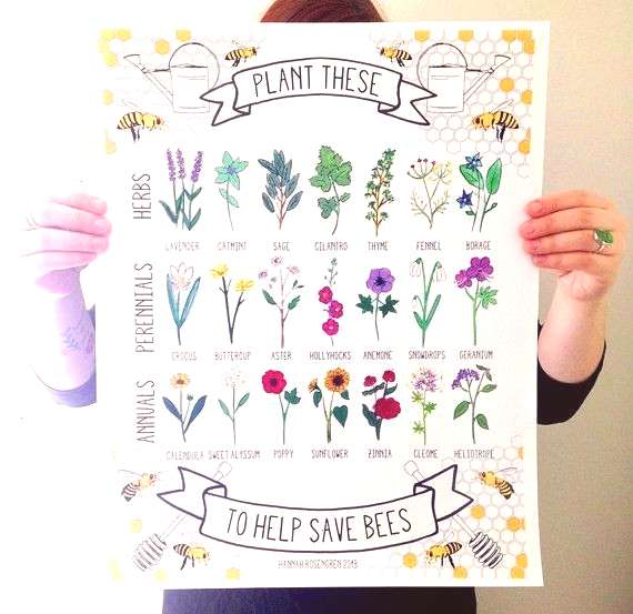 word Plant These Help Save Bees 16x20 quotPoster * OR * 8x10quot Print - 16 x 20 plants save this